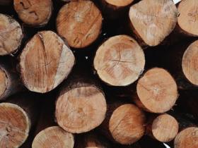 砍柴的技巧:从有节的部位下手而不是避开
