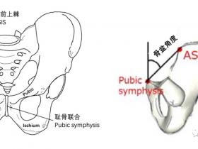 碰撞下潜的骨盆影响因素分析